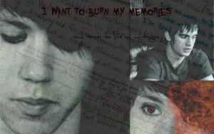 Burn My Memories by immortalliac