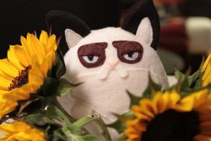 Grumpy Cat is displeased.. even with flowers by JanellesPlushies