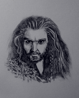 Oakenshield by N-B-R-artwork