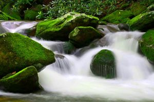 Mountain Stream by UriahGallery