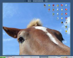 My desktop, i guess by rhinebeck