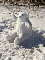 Snow Bear! by ColeJA