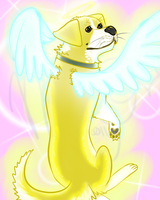 All Dogs Go to Heaven by StormyTiger
