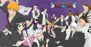 Ichigo Rukia and 13 Captains by Xpand-Your-Mind