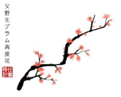 Plum Blossom by cl0ckw0rked