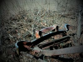 Abandoned Carwreck part 6 by TheProdigy100
