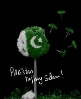 Pakistan.. by shahjee2