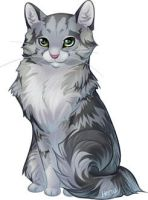 A Kitty For CT by henu