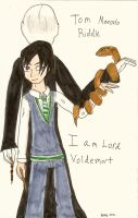 Tom Riddle by QweXTheXEccentric