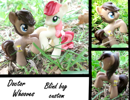 Doctor Whooves Custom by Lolly-pop-girl732