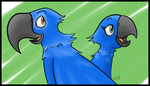 Chained-to-Each-Other Birds by LordofOoo