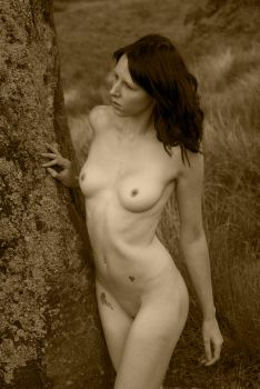 Cassie 11 sepia by andyf451