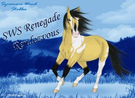 SWS Renegade Rendezvous by StillRaging