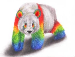 Rainbow Panda by squanpie