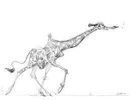 Giraffe Sketch by davidsdoodles
