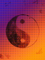 Yin and yang by Tallis