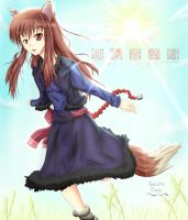 Spice And Wolf fanpic: Horo by AnimeFury