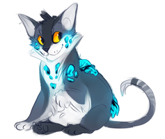 Frost kitty by xDorchester
