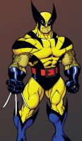 Ed McGuinness Wolverine color by JAM32