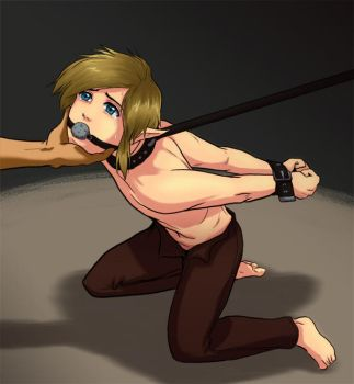 naked tied up zelda
