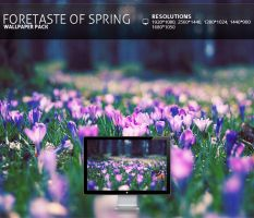 foretaste of spring - Wallpape by PatrickRuegheimer
