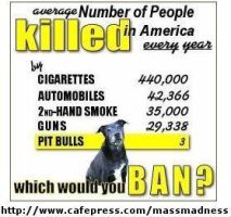 Michigans ban of Pitbulls... by HelpTheDogs