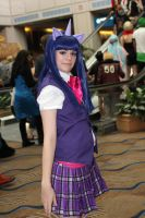 Metrocon 2012 37 by CosplayCousins