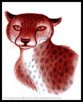 Cheetah by LadyFromEast