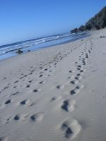 footprints by t-e-z-z