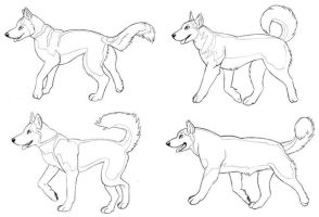 Husky Concept Art by mlaproductions