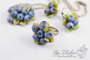 Jewelry set with blueberries by polyflowers