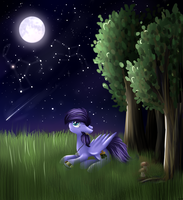 [PC] Quiet night by muffinka22
