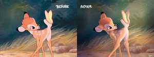 Burd! Before and after by Ponacho