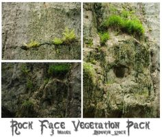 Rock Face Vegetation by lindowyn-stock