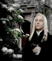 Mr Malfoy by Dixiebell12