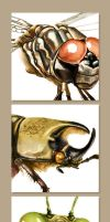 Insect Study close-up by muzski