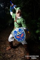 Time to save Hyrule!....again by Starkiller-Cosplay