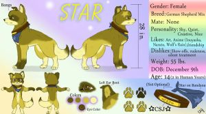 Star's Updated Ref Sheet by DogWolf129