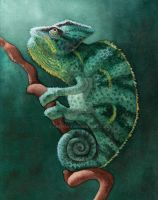 Chameleon Watercolor by cachava