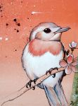 Blushing Robin by Rosalind