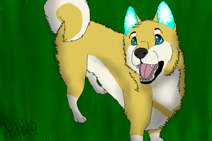 AT with Sockune by Acid-Wolfe