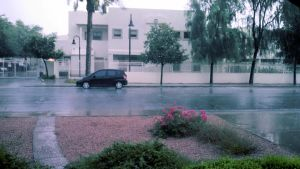 Afternoon Monsoon Rain 3 by BigMac1212