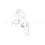 Practice Rearing Pony Sketch by Country-Cowboy