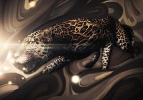 Leopard Motion by Takiboshi