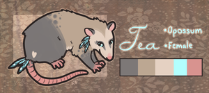 Tea Opossum - SOLD by pandapoots