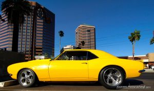 Canary Yellow Camaro by Swanee3