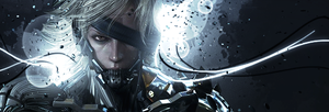Metal Gear Rising - Raiden by Crownez