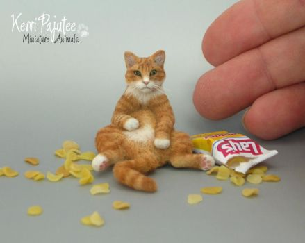 1:12 scale Miniature Cat called Crush by Pajutee