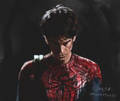 201207070008.spiderman by jingjer