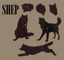 Shep Commission by DawnFrost